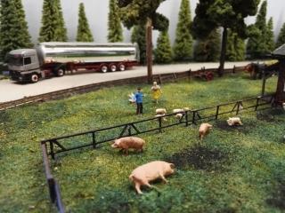 Bauer Heinrich treibt die ausgebrochenen Ferkel zurück