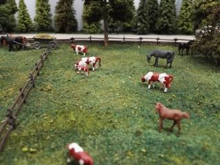Pferde und Kühe müssen sein!